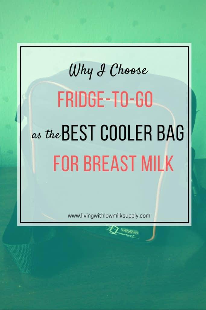 cooler-bag-for-breast-milk-fridge-to-go-review