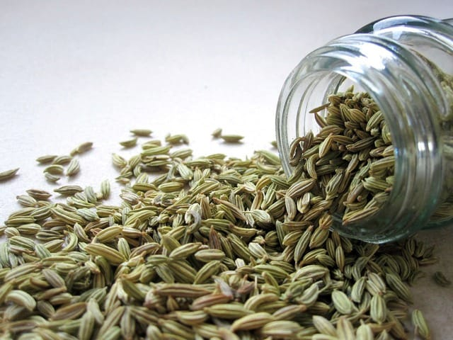 fennel boost milk supply