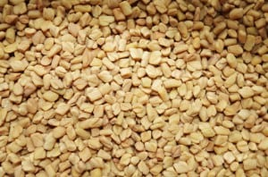fenugreek-1049596_640