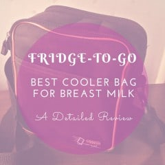 cooler bag for breast milk