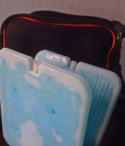 thin-ice-panel-fridge-to-go-reviews