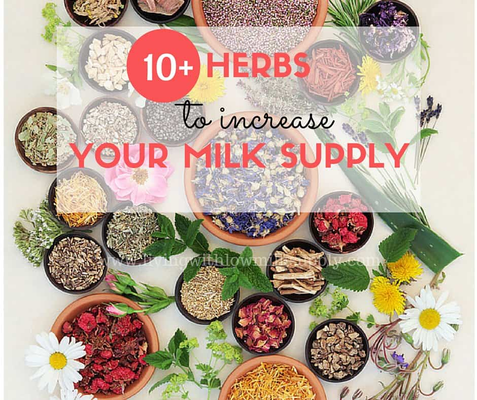 how to eat fenugreek seeds to increase milk supply