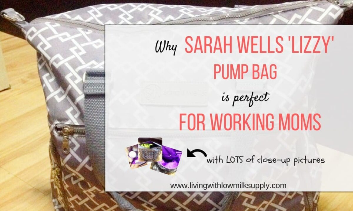 Sarah Wells Lizzy Breast Pump Bag Review Detailed Pros Cons