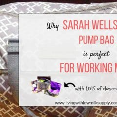 sarah wells breast pump bag reviews